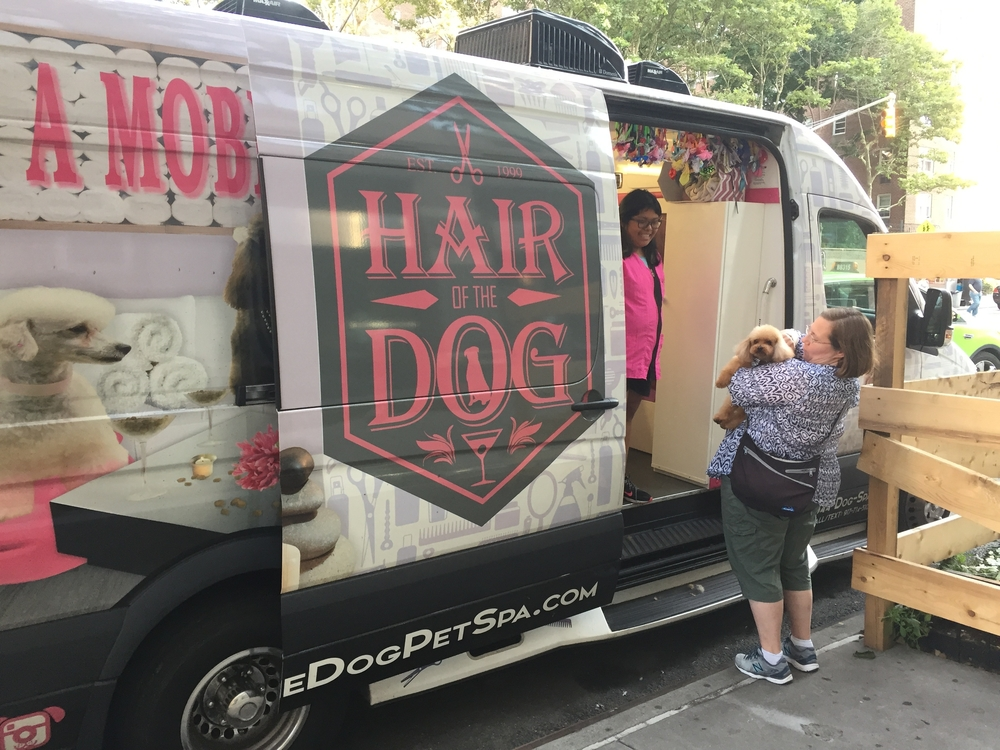 Mobile Pet Grooming Service Singapore